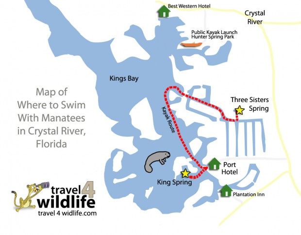 Map of Where To Swim With Manatees in Crystal River Florida