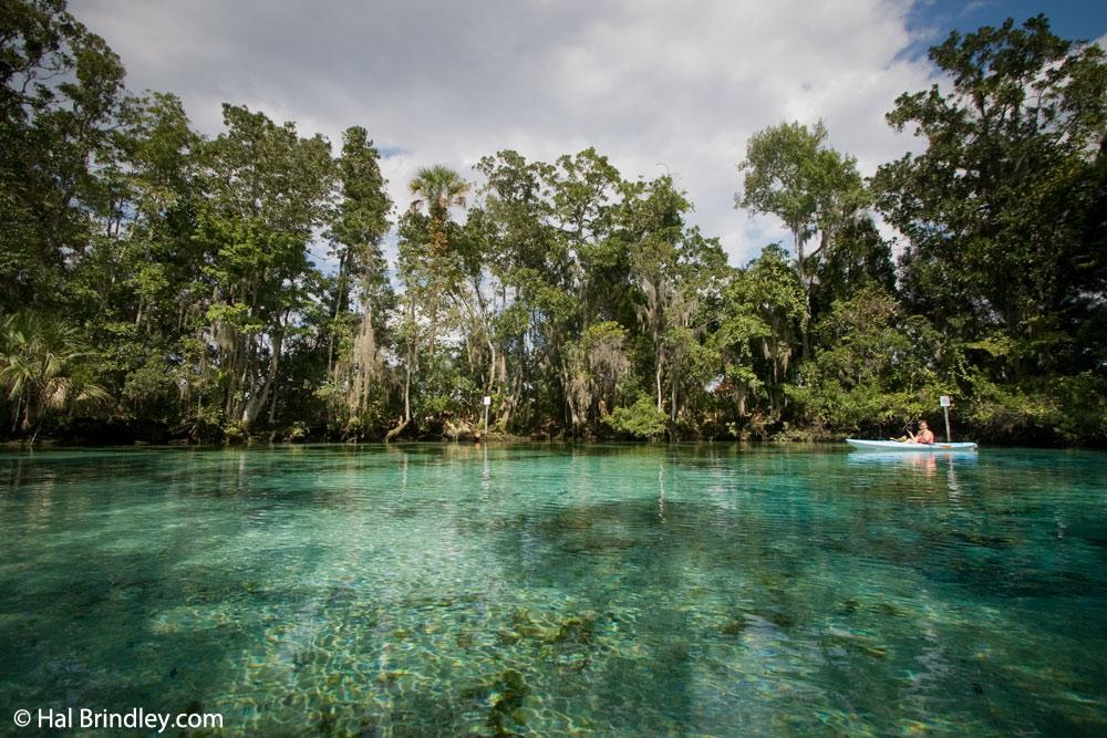 Kayaking in Three Sisters Spring in Crystal River Florida