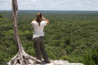 Forest in every direction, Calakmul Biosphere Reserve
