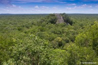 Buried in the jungle: the Maya ruins of Calakmul