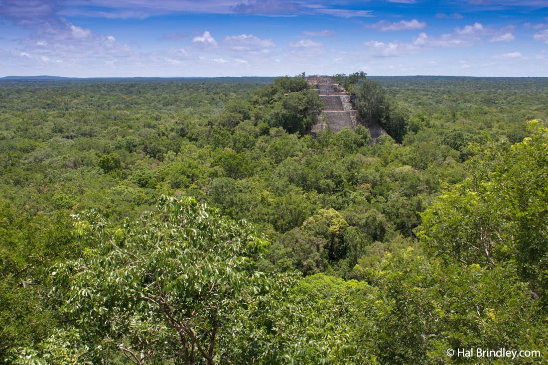 belize location on map with Deep Jungle Puerta Calakmul Mexico on Fieldwork4 likewise Paracas National Reserve Tour likewise Deep Jungle Puerta Calakmul Mexico as well Wales further Bali.