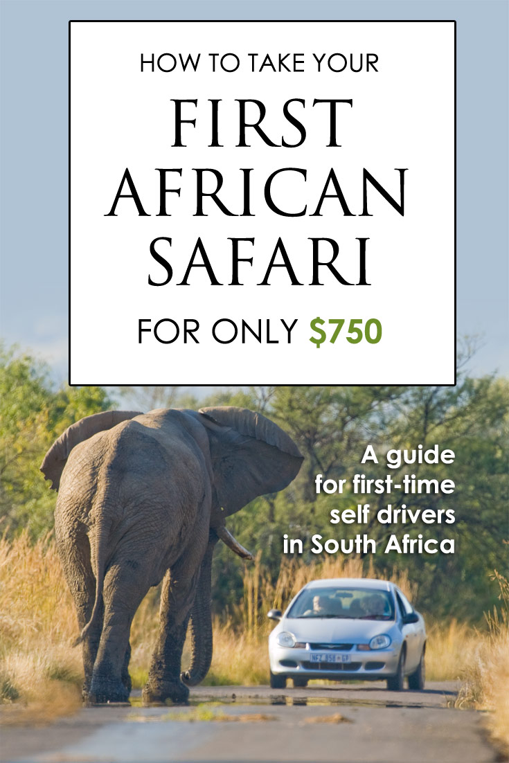 I always thought that going on a safari would cost an arm and a leg. It doesn't have to!