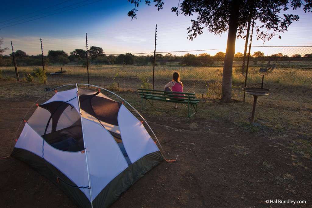Enjoy your safari in Kruger and camp with a view!