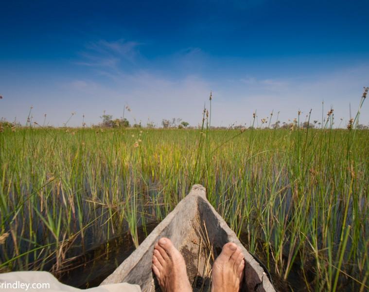 Take a mokoro trip on the Okavango Delta