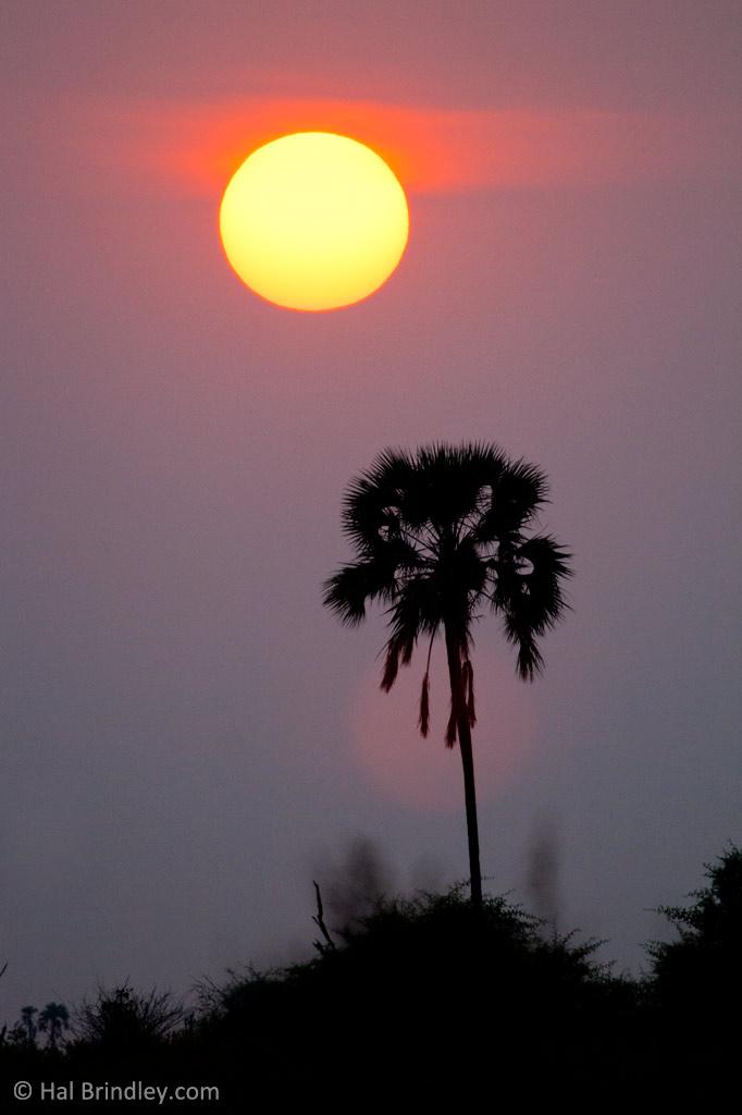 Magical Botswana sunset