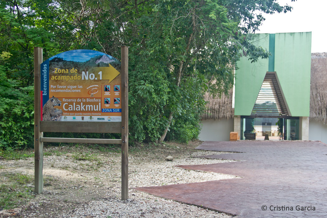 The Museum of Calakmul