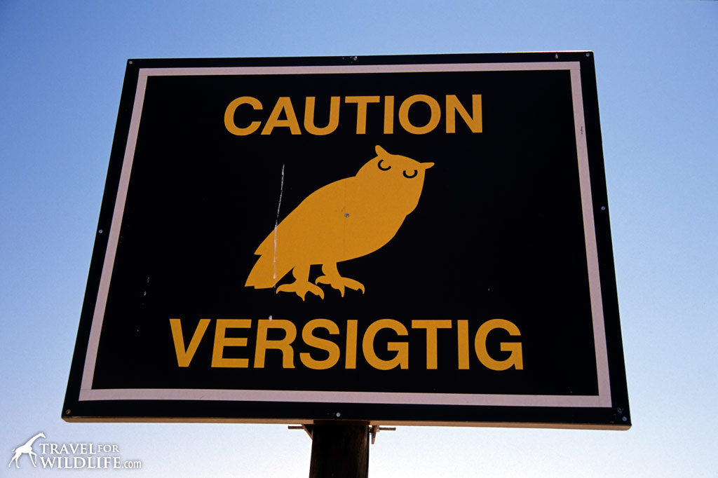Owl Crossing sign near the Kgalagadi Transfrontier Park, South Africa