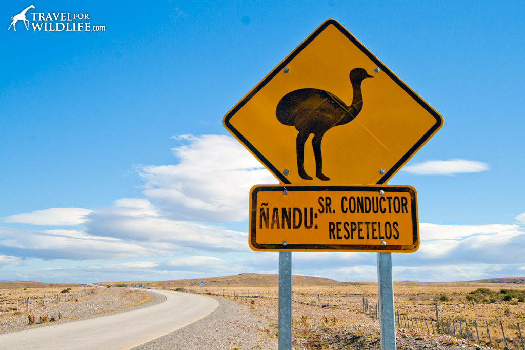 Rhea crossing sign, Patagonia,Argentina