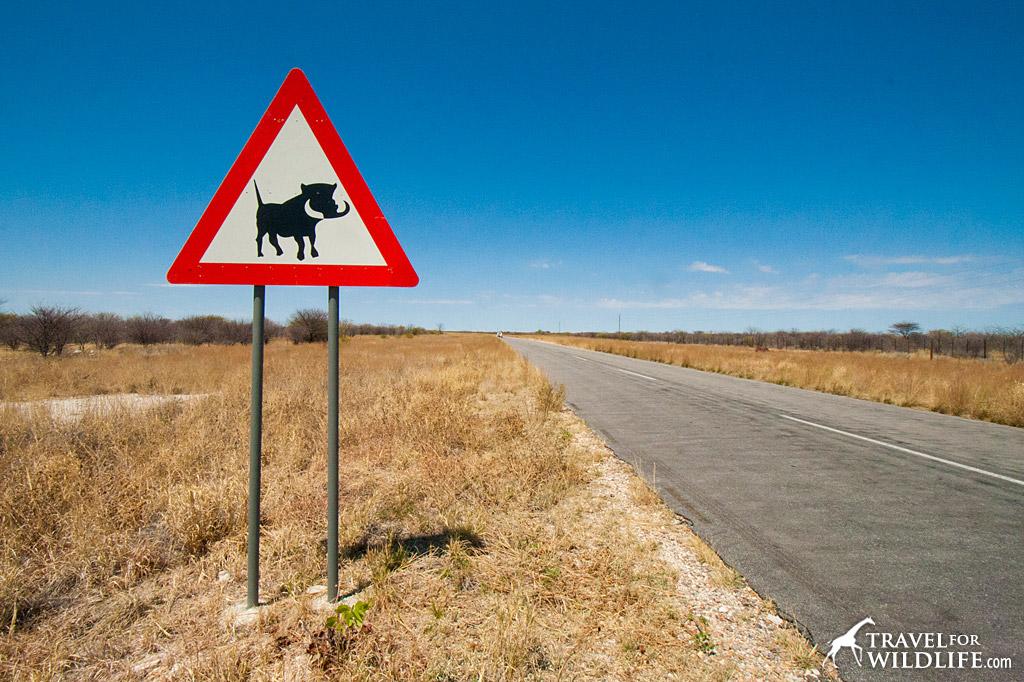 Warthog crossing sign near Etosha, Namibia
