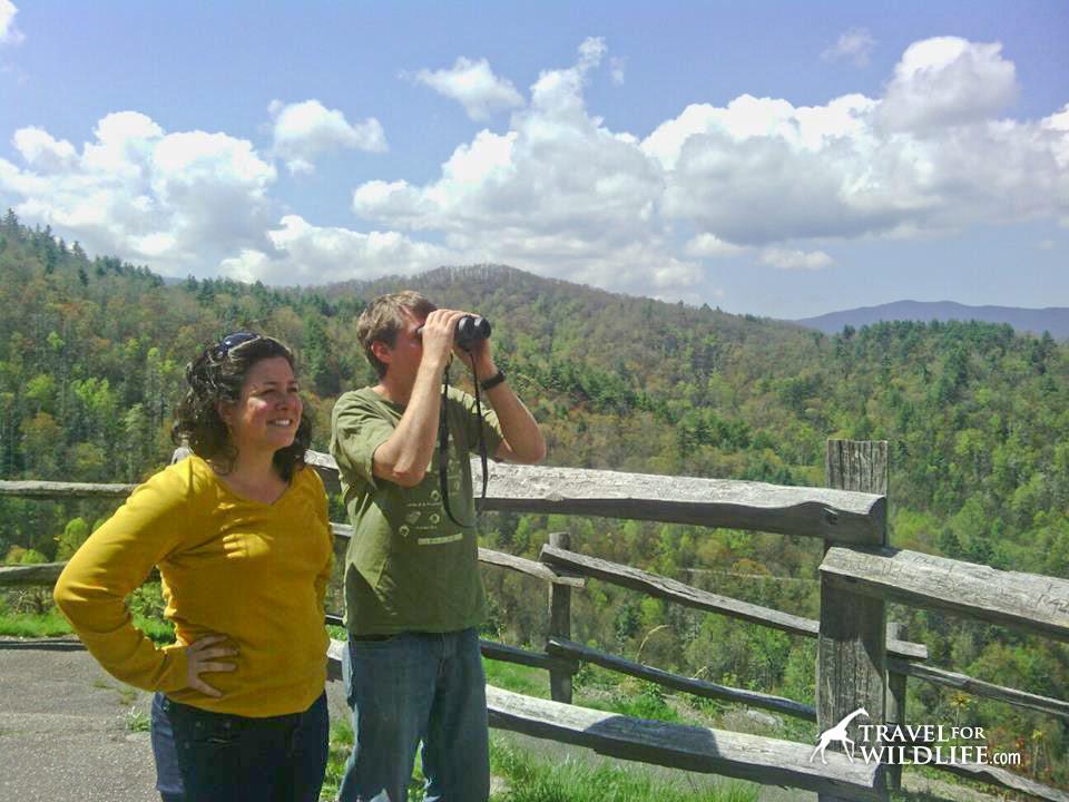 Birdwatching in North Carolina