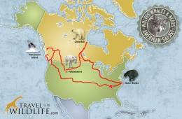 Travel For Wildlife American Safari Route Map