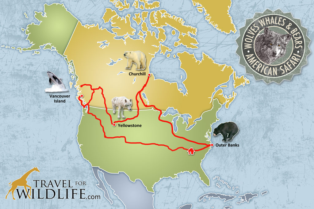 Travel For Wildlife American Safari Route Map