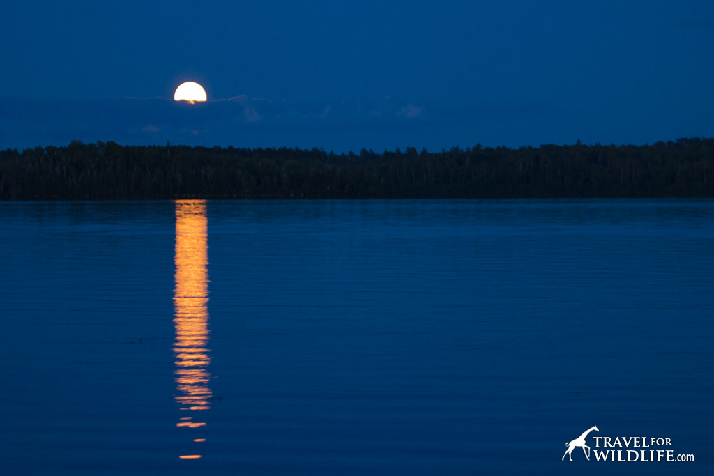 Full moon rising over Birch Lake near Ely, Minnesota