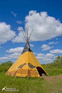 A tipi at Fort Whyte Alive