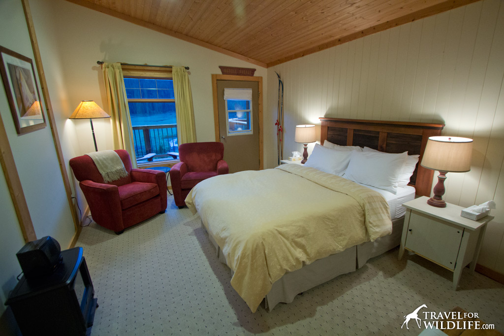 Our cozy room at the Mount Engadine Lodge