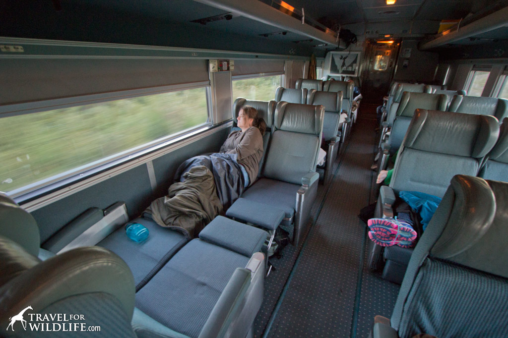 Riding to Churchill on the Via Rail train economy seats