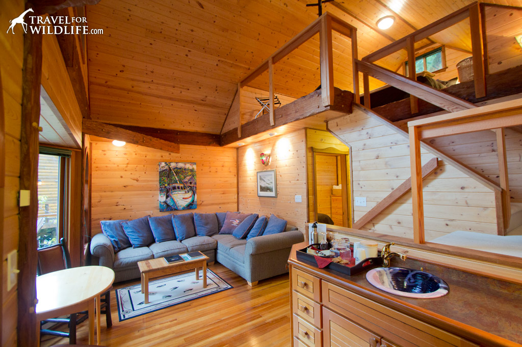 One of the nine luxury cabins at Nimmo Bay Resort