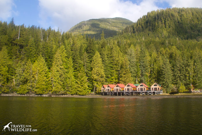 Nimmo Bay Wilderness Resort in British Columbia
