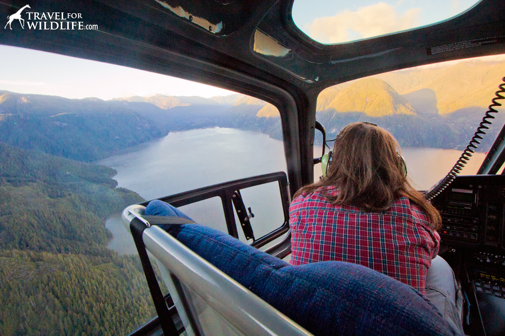 Take a helicopter tour of the Great Bear Rainforest at Nimmo Bay
