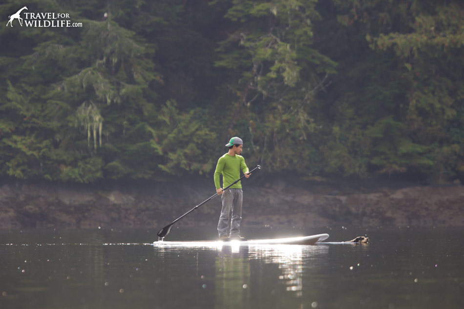 Paddle boarding in the Great Bear rainforest