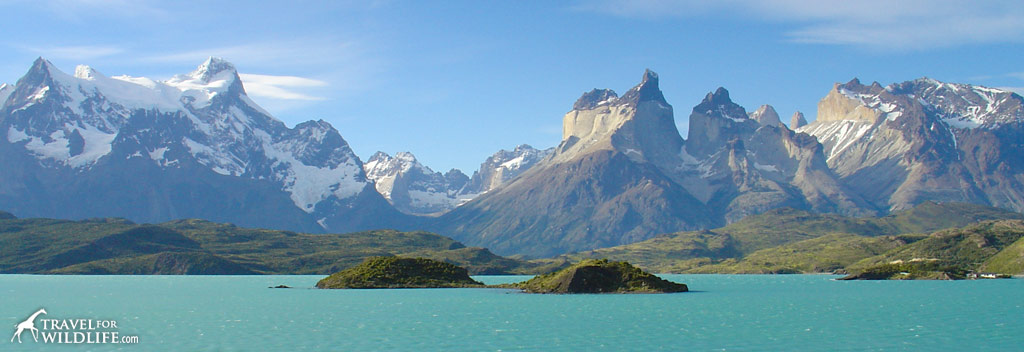 Stunning mountain and glacier views at Torres del Paine