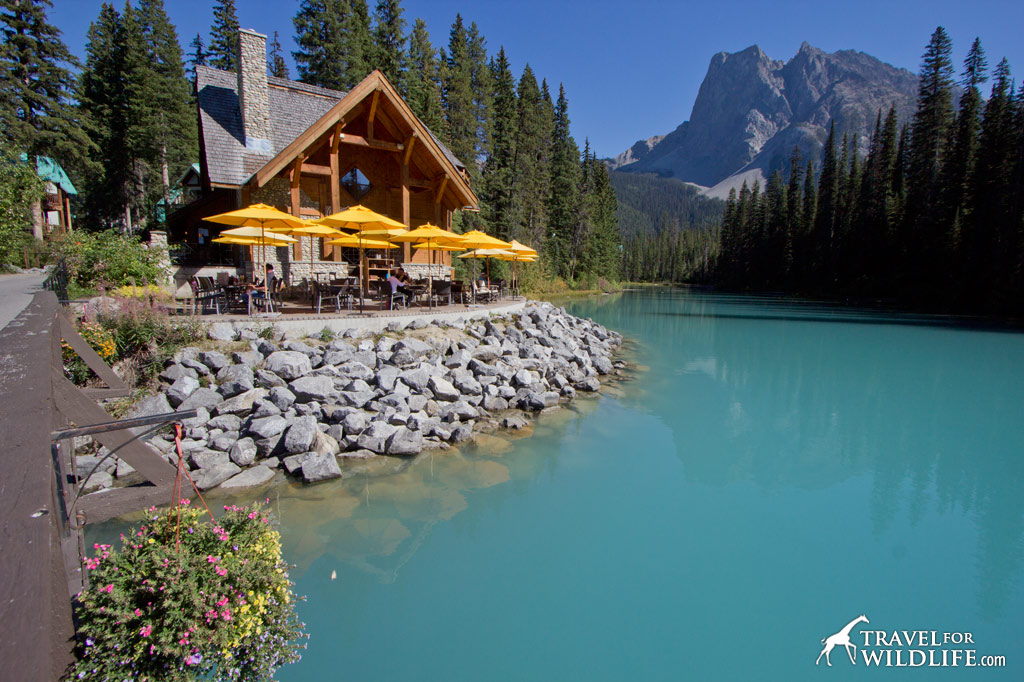 The beautiful Emerald Lake