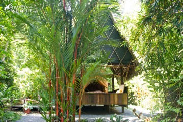 One of Finca Exotica huts