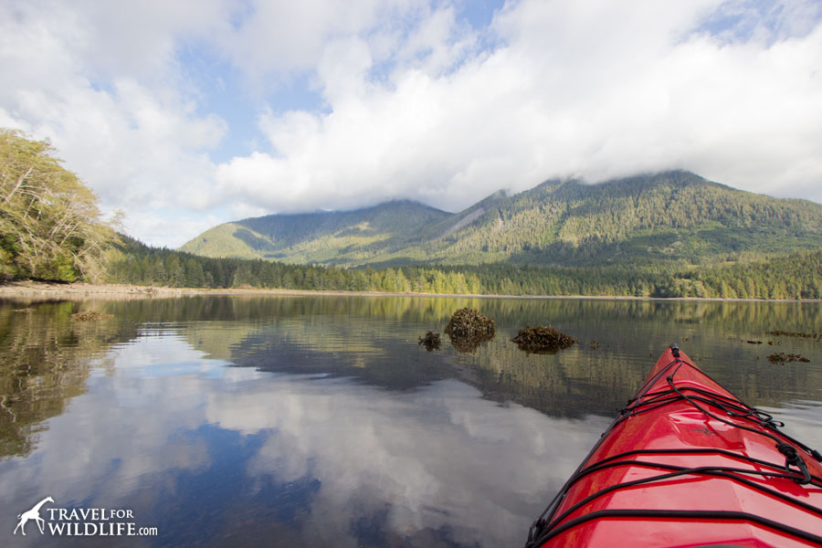 Kayaking solo in British Columbia