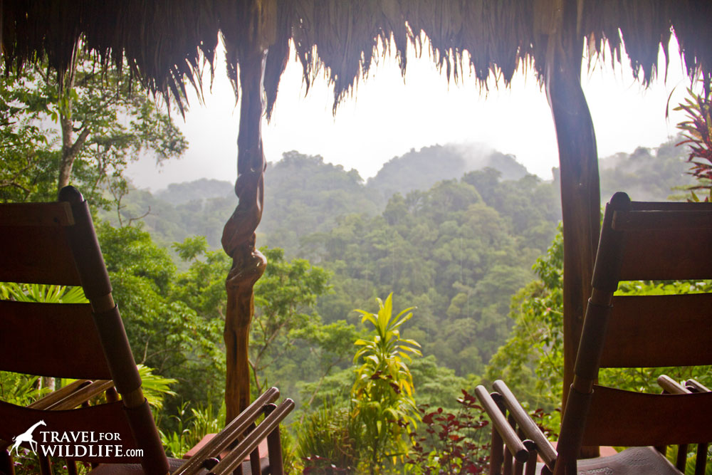 Views from our favorite Costa Rica ecolodge