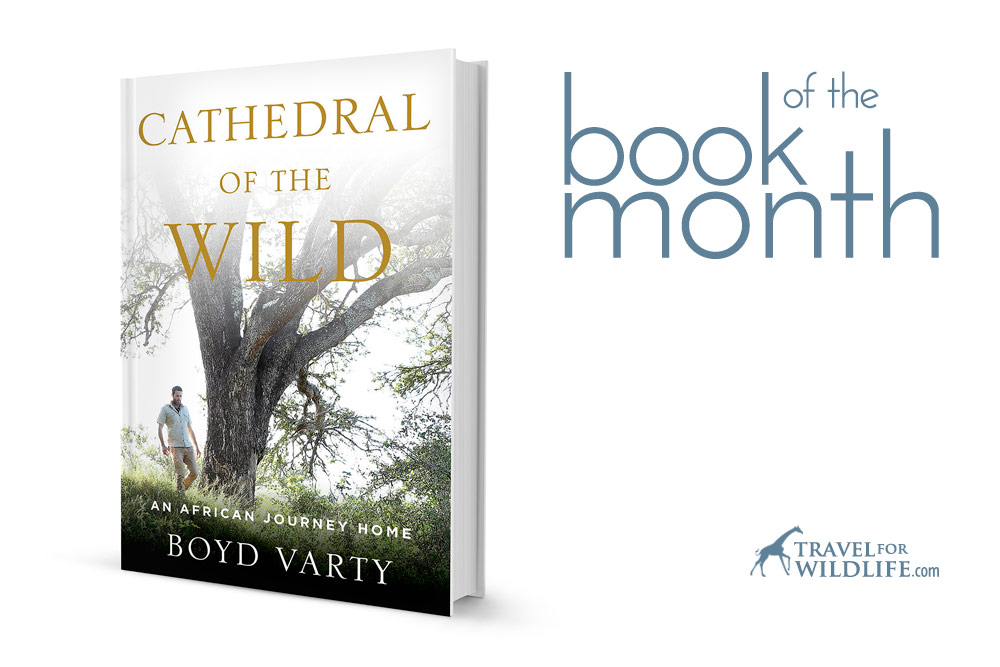 Cathedral of the Wild book
