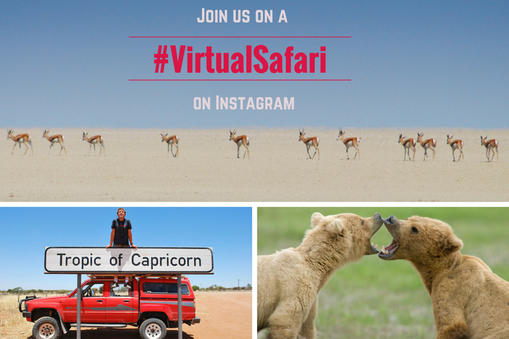 #VirtualSafari Instagram