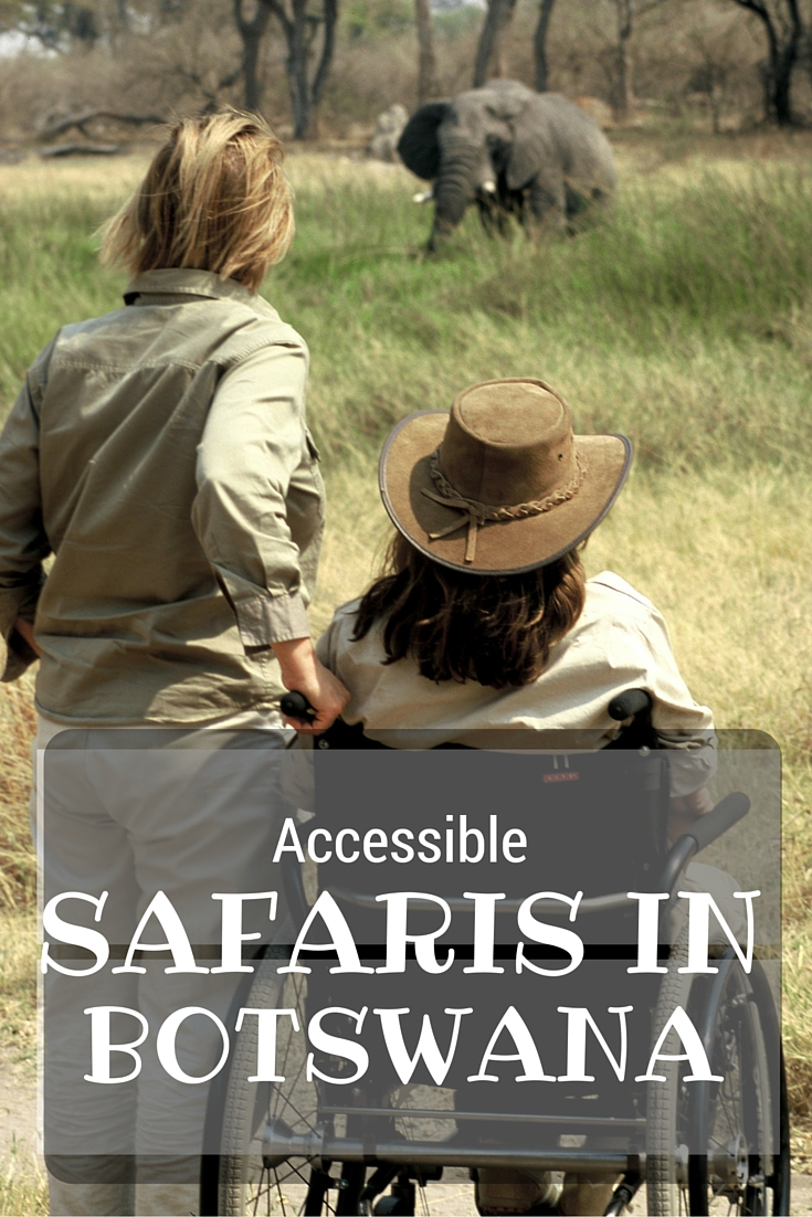 Accessible safaris pinterest image