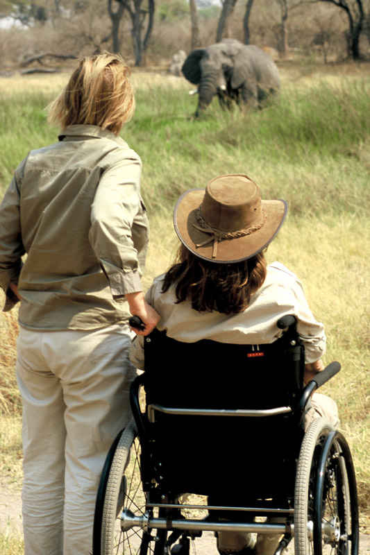 wheelchair safari