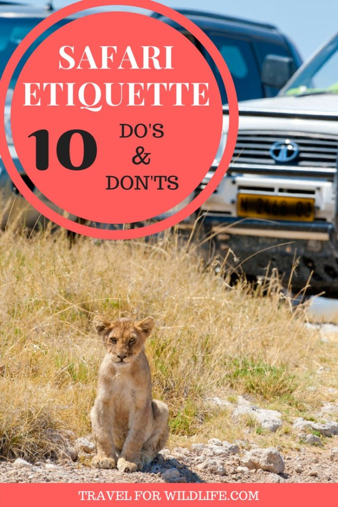 Going on a self drive safari is one of the best ways to do go on an African Safari. But before you go, make sure you know how to deal with some situations. It will help you have the best safari you've ever had!