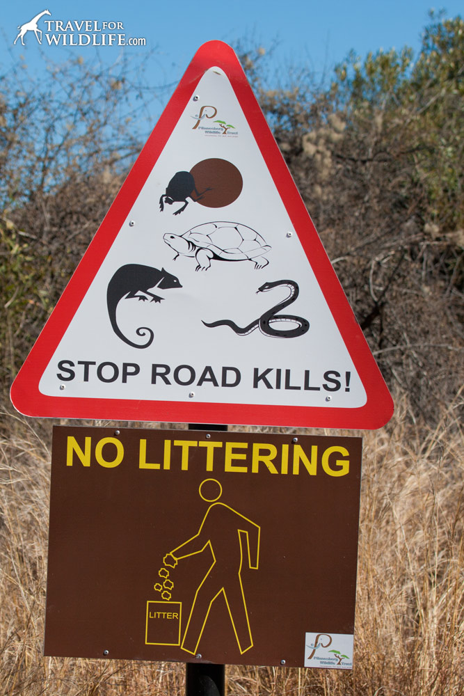 no littering animal road sign in Pilanesberg Park, South Africa