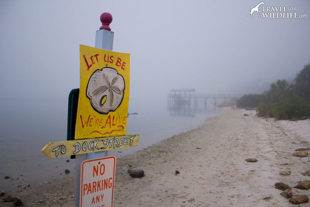 """Sign on the beach at the Faraway Inn """"Let us Be. We're Alive!"""" Cedar Key, Florida"""