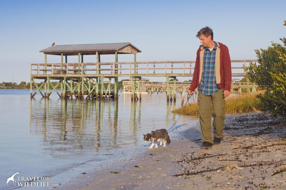 Hal walking his cat Scamper on a beach in Cedar Key Florida