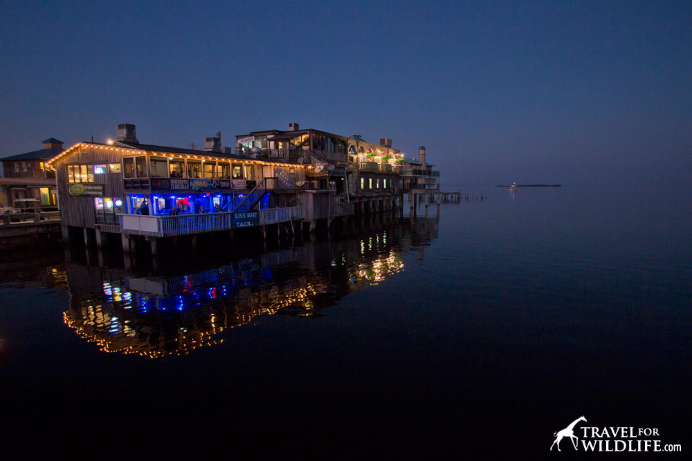 Waterfront dining at sunset on the dock in Cedar Key