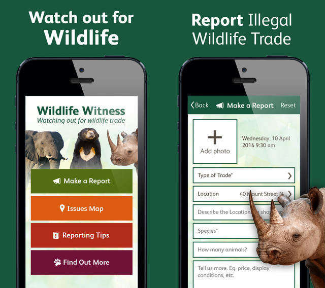 the app to report wildlife trafficking