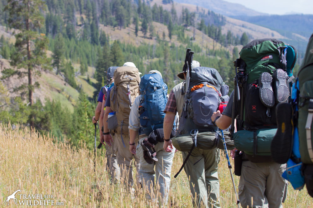 A group of hikers in Yellowstone National Park, Wyoming