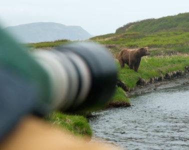 McNeil River State Game Sanctuary. Alaska, USA. © Hal Brindley