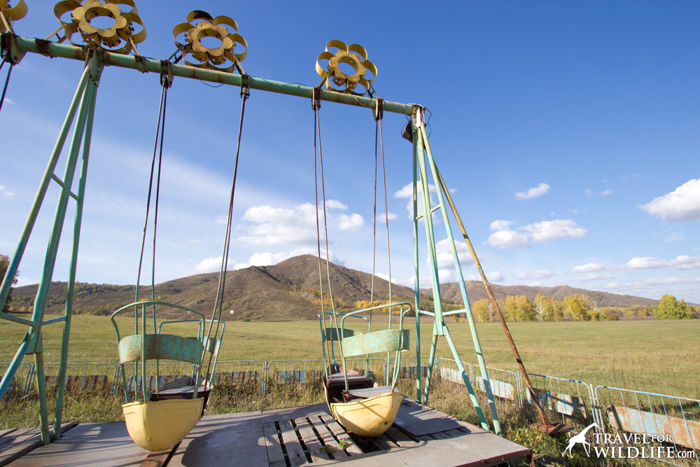 Remains of a soviet era resort. I loved these swings!