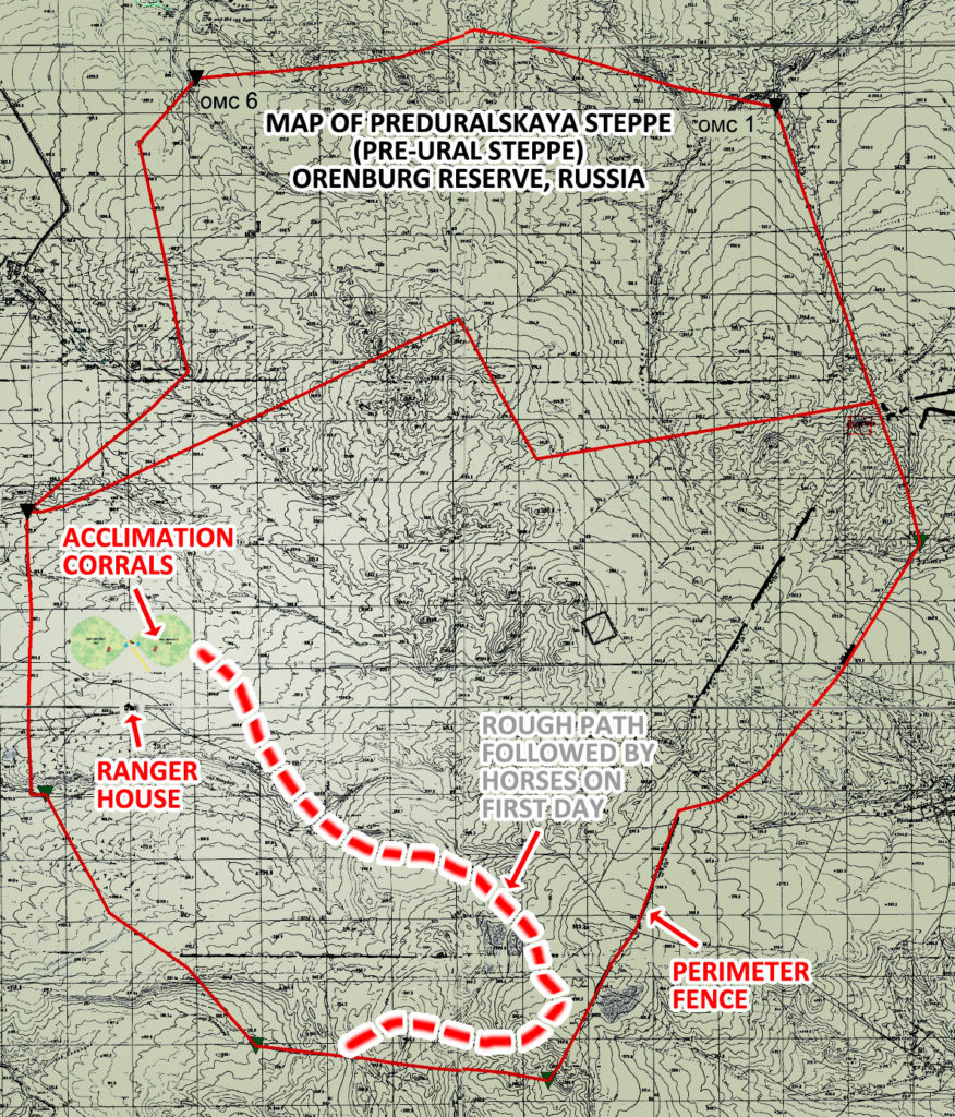 Map of Preduralskaya Steppe, Orenburg Reserve, Russia, and the movements of Przewalski's Horses