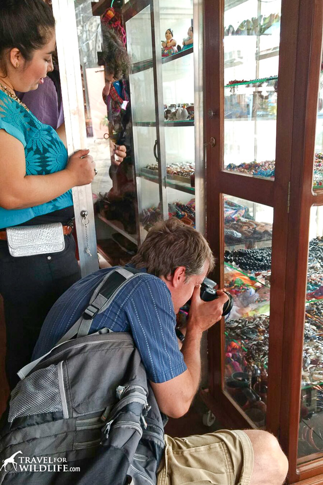 Hal photographing piles of sea turtle jewelry