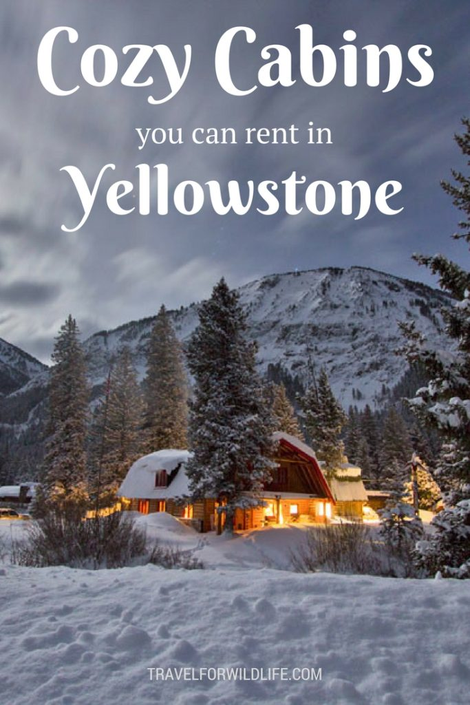 11 Dreamy cabins you should rent in Yellowstone for your next vacation. These are our favorite Yellowstone cabins. #Yellowstone #cabins