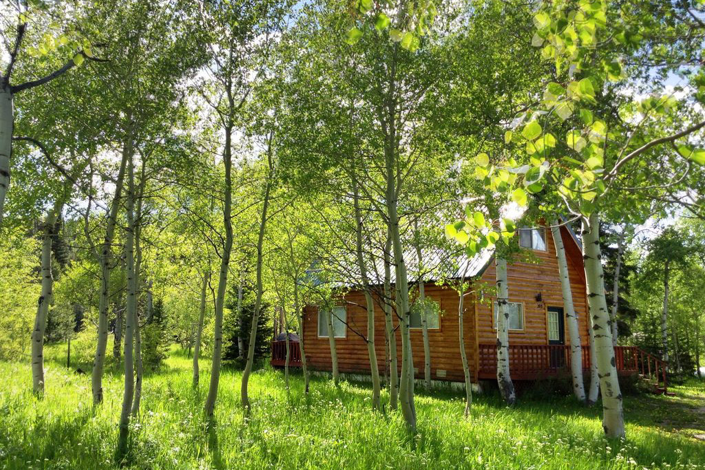 A secluded setting for this log cabin