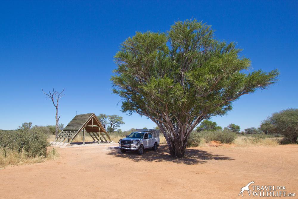 Monamodi Campsite 1 (KTMON01) in Mabuasehube, Kgalagadi Transfrontier Park, Botswana.