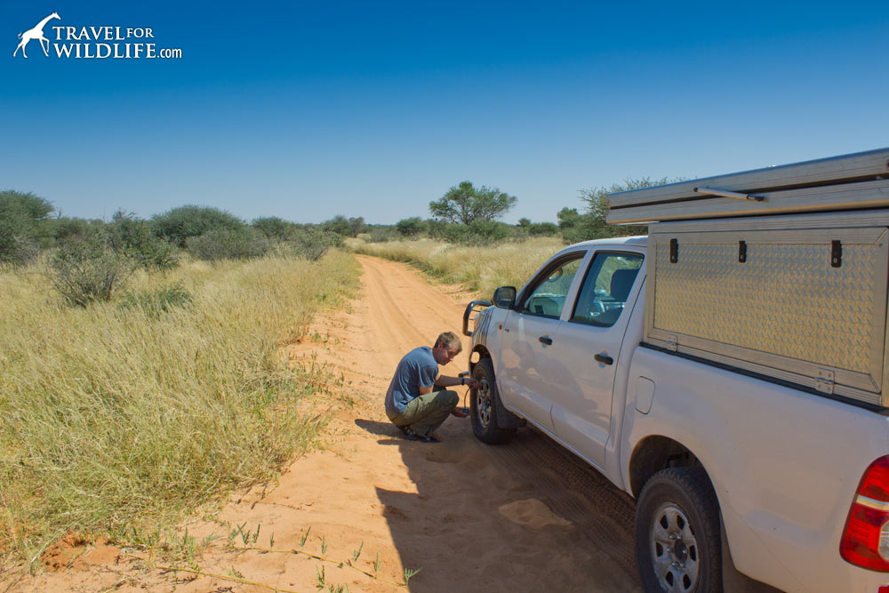 Driving on the Bosobogolo 4x4 Trail in the Kgalagadi Transfrontier Park, Botswana