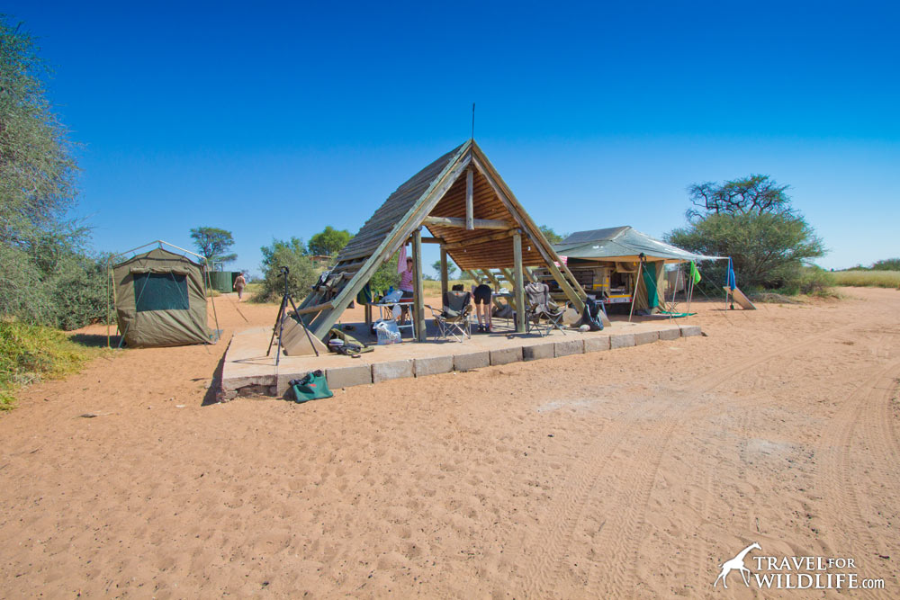 Mpaya 01 (KTMPA01), Mabuasehube, Kgalagadi Park, Botswana