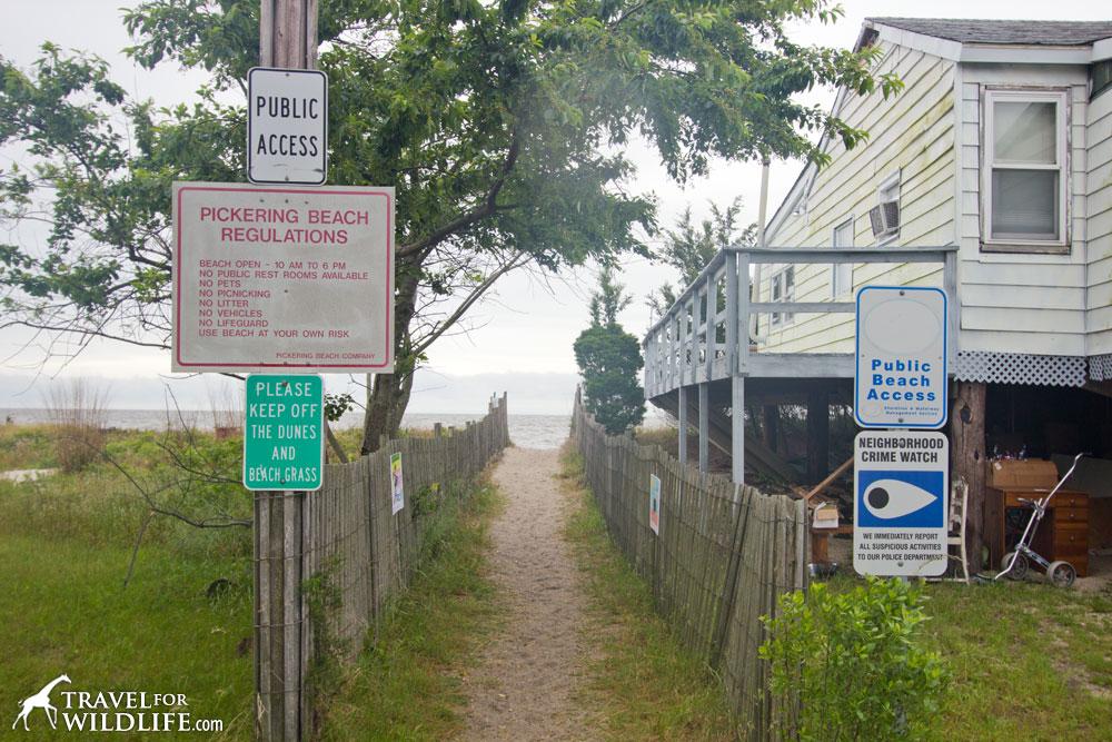 Pickering Beach public beach access hours